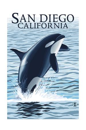 San Diego, California - Orca Jumping