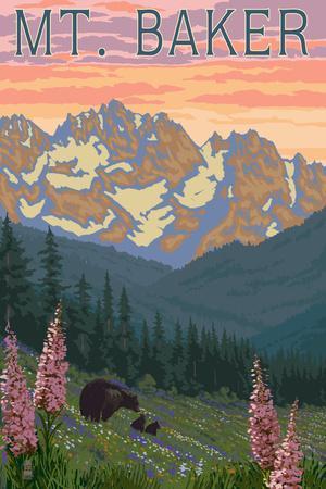 Mt. Baker, Washington - Bears and Spring Flowers