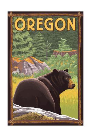 Bear in Forest - Oregon