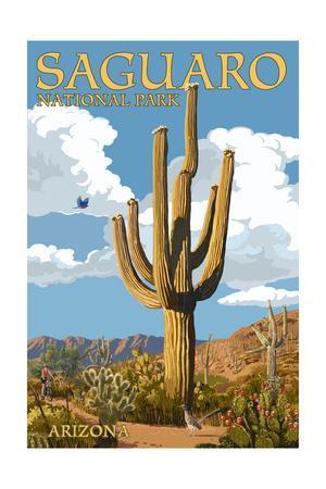 Saguaro National Park, Arizona - Roadrunner and Trail