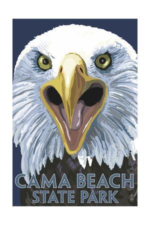 Cama Beach State Park, Washington - Eagle Up Close