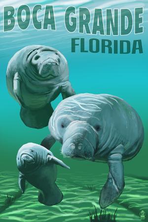 Boca Grande, Florida - Manatees