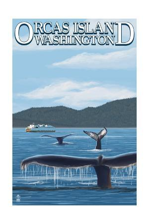 Orcas Island, WA - Whales and Ferry