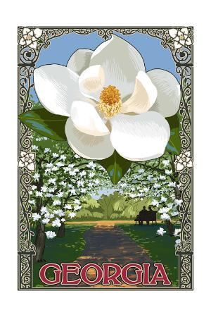 Georgia - Magnolia