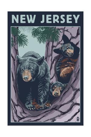 New Jersey - Black Bears in Tree