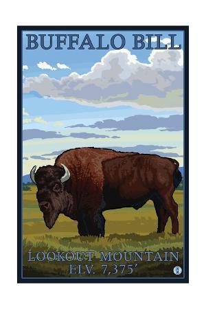 Lookout Mountain, Colorado - Bison Solo