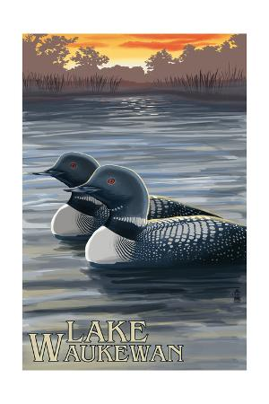 Lake Waukewan, New Hampshire - Loon Scene