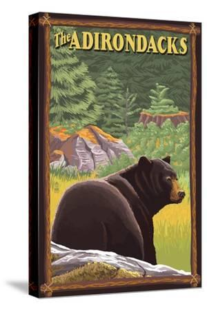 The Adirondacks - Black Bear in Forest