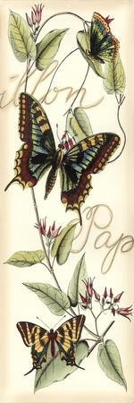 Butterfly Flight I