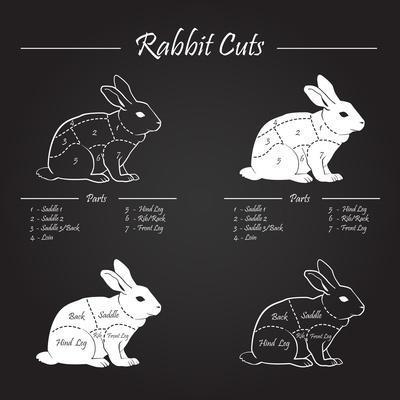 Rabbit Meat Cuts Scheme - Chalkboard
