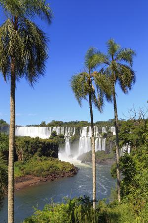Argentina, Iguazu Falls National Park, (Unesco Site)