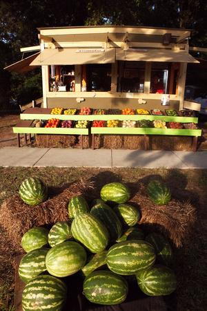 An Outdoor Vegetable Stand in Duck, North Carolina