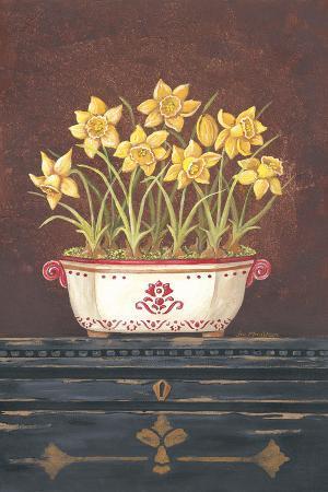 Asian Daphodile Floral