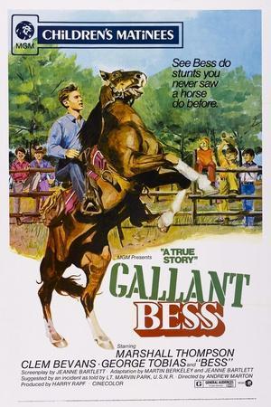Gallant Bess, Marshall Thompson, 'Silvernip,' the Horse, 1946