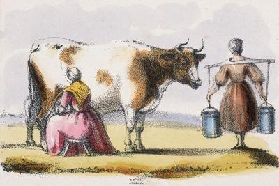 Milk, C1845