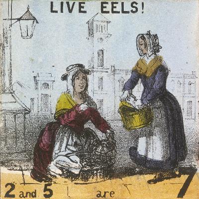 Live Eels!, Cries of London, C1840