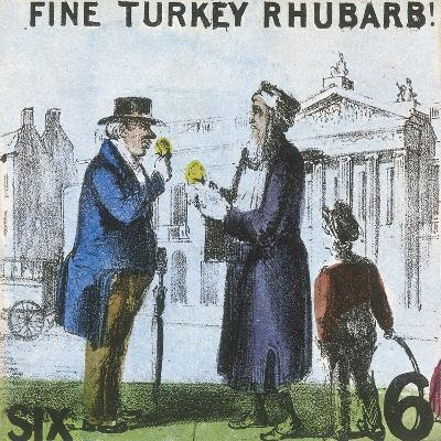 Fine Turkey Rhubarb!, Cries of London, C1840