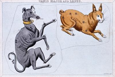 Constellations of Canis Major and Lepus, C1820