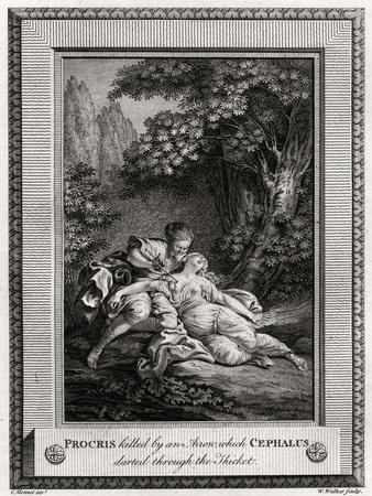 Procris Killed by an Arrow Which Cephalus Darted Through the Thicket, 1775
