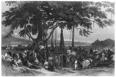 The Arrival of the Contingent Force of the Sikh Irregular Cavalry, India, C1860