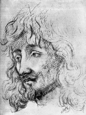 Study of a Head, 17th Century