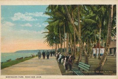 Borinquen Park, Near San Juan, 1909