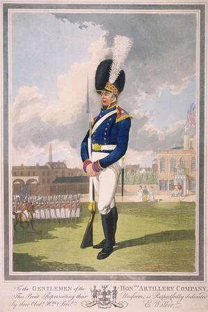 Military Figure in the Uniform of the Honourable Artillery Company, 1803