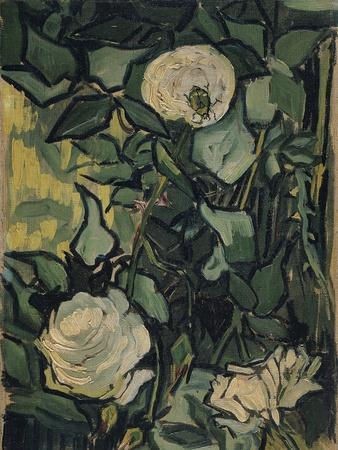 Roses, 1890