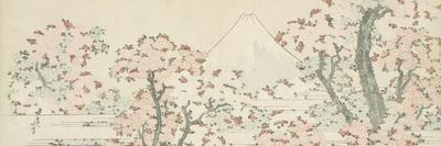 The Mount Fuji with Cherry Trees in Bloom