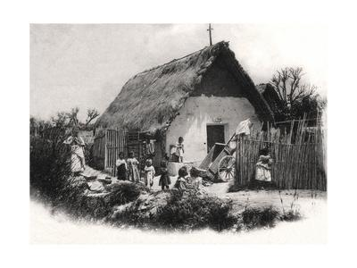 A South American Shack, C1900s