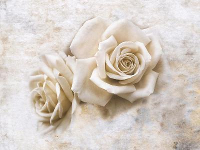 Vintage Rose 4