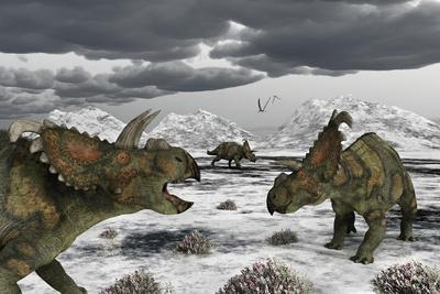 Albertaceratops During their Winter Migration