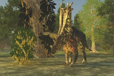 A Pentaceratops Dinosaur Ambles Among Forest Trees in the Cretaceous Era