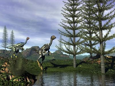 Caudipteryx Dinosaurs at the Water's Edge Next to Tempskya Trees