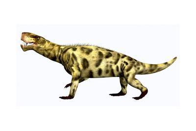 Inostrancevia Carnivorous Reptile from the Permian Period