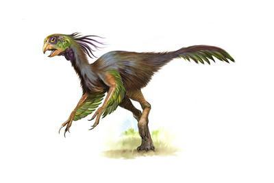 Khaan Oviraptor with Beautiful Feathers