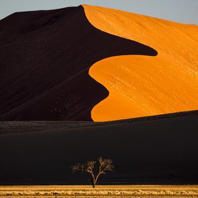 Africa, Namibia, Namib Naukluft National Park. Abstract of Sand Dune