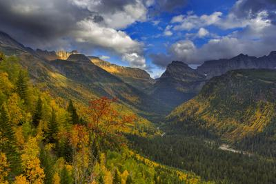 Autumn Color in the Upper Mcdonald Valley of Glacier National Park, Montana