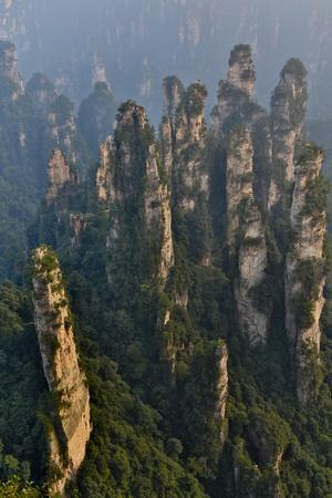 China, Hallelujah Mountains, Wulingyuan, Landscape and Many Peaks