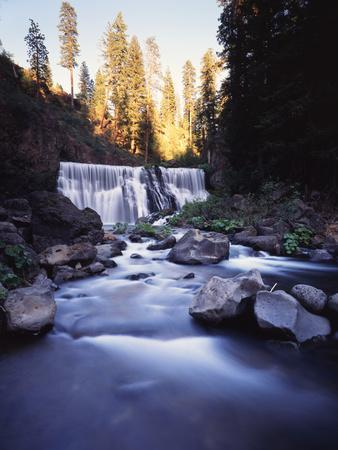 California, Shasta Trinity Nf, Middle Fall on the Mccloud River