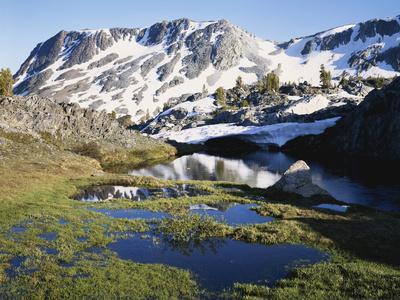 California, Sierra Nevada, a Tarn in the Hoover Wilderness in Inyo Nf