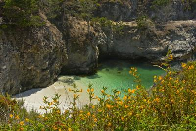 China Cove and Beach, Point Lobos State Reserve, California, USA