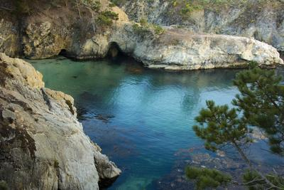 China Cove, Point Lobos Natural Reserve, Carmel, California, USA