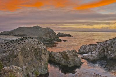 Sunset, Bird Island, Point Lobos State Reserve, California, USA