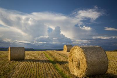 Evening Sun on Bales of Hay Near Inverness, the Highlands, Scotland