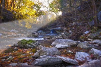 Mccormick Creek Sp Canyon in Early Morning Sun, Spencer, Indiana