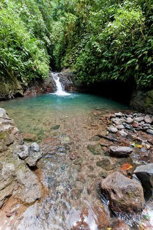 Swimming Hole, Rainmaker Conservation Project, Costa Rica