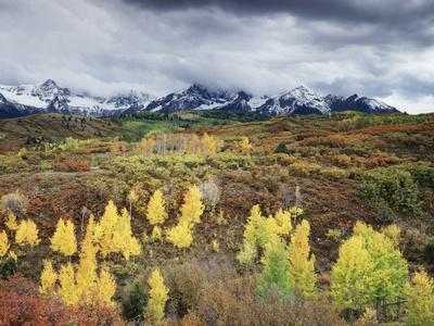 Colorado, San Juan Mountains, a Storm over Aspens at the Dallas Divide