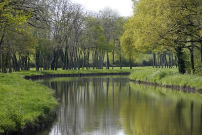 France, Loire. Canal Winding Through Spring Trees and Foliage
