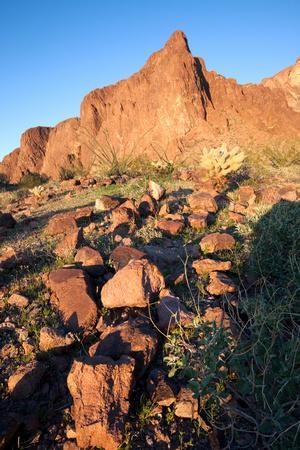Volcanic Rhyolite, Kofa Wildlife Refuge, Arizona